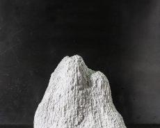 A Segrate la mostra dell'artista Stefano Bonacci