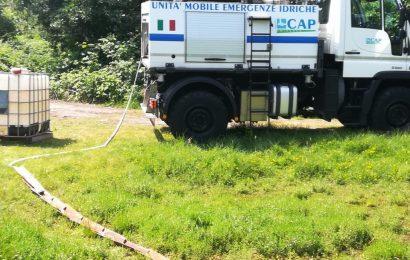 L'autocisterna salva lo stagno dove si riproducono i rospi smeraldini